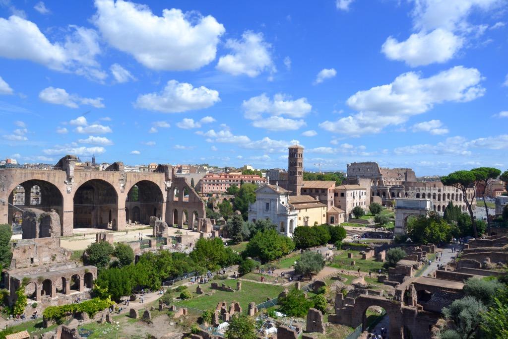 Il Colosseo dal Palatino J